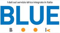 Il sistema idrico fotografato da Blue Book 2017